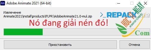 animate21s2