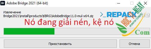 bridge21s2
